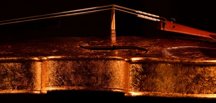 イタリアのマエストロによる世界で初めて、黄金色に輝くゴールド(金箔)バイオリン!