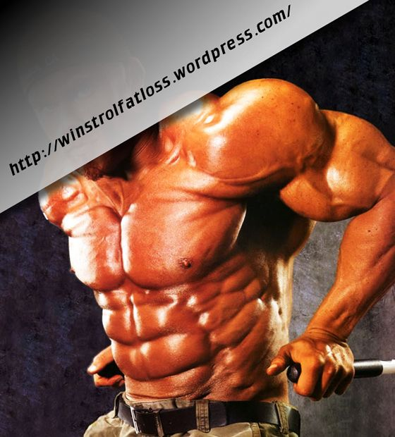 What Is Winstrol-Winstrol Cycles For Men   Winstrol Fat Loss  Winstrol, a synthetic anabolic steroid derived from Dihydrotestosterone, is approved by the U.S. Food and Drug Administration to treat anemia and hereditary angioedema. Popular as a cutting cycle drug among bodybuilders and strength athletes, this drug has the ability to stimulate appetite and the production of red blood cells in the body.