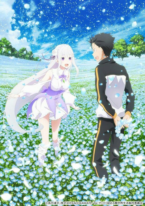 What Order To Watch Re Zero : order, watch, Anime,, Anime