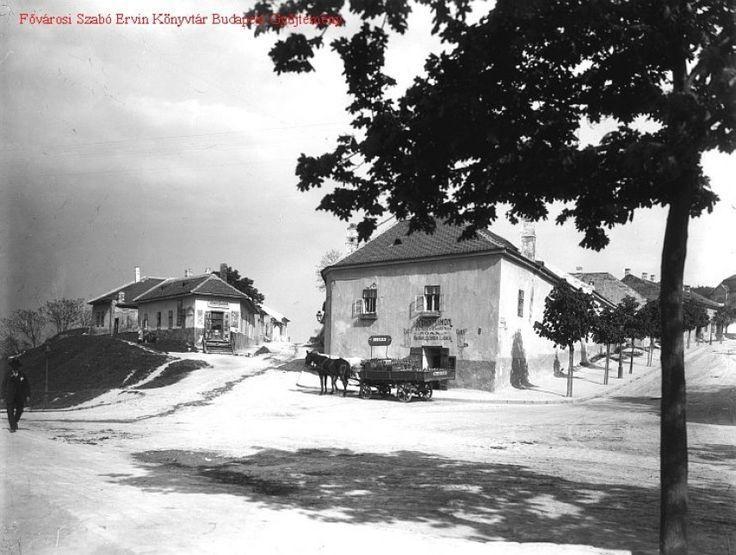 Idilli kép! 1900 táján, Hadnagy utca (Hegyalja út). Jobbra a Sánc utca. A két ház közötti utca neve Felsőhegy utca volt. Ekkoron még a Tabán városrészhez tartozott. Nem könnyű ráismerni, de az