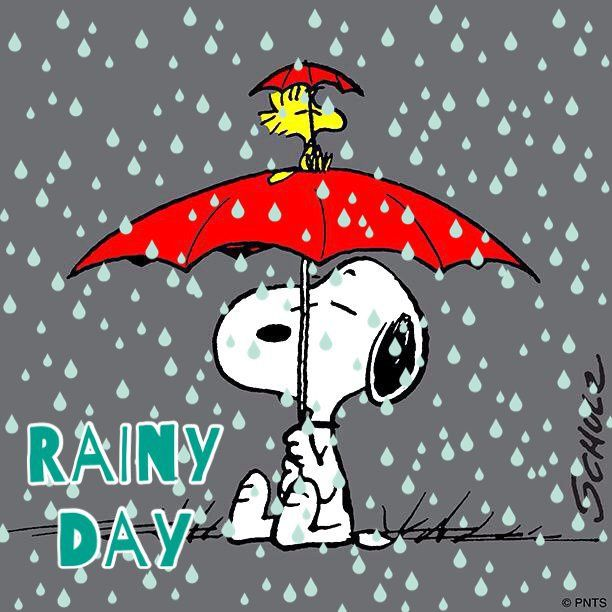 Funny Quotes About Rainy Days: Rainy Day Blues Under A Red Umbrella