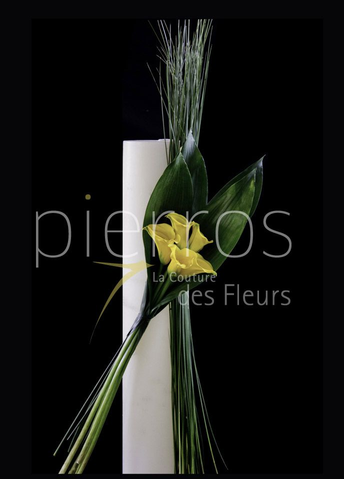 """Minimalism"" by M.Florist Pierros V. View"