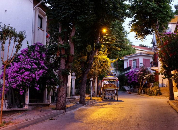 Büyükada sokaklari by @kucukmartha