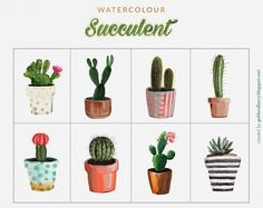 FREEBIES | Watercolor Succulents cactus clip art collection | 8 FREE PNG IMAGES Gold and Berry blog goldandberry