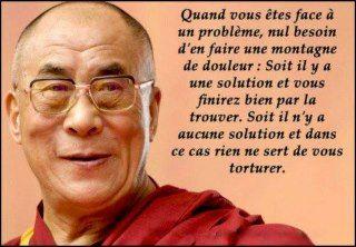 Quand vous êtes face à un problème, nul besoin d'en faire une montagne de douleur : soit il y a une solution et vous finirez bien par la trouver, soit il n'y a aucune solution et dans ce cas, rien ne sert de vous torturer - Dalai Lama