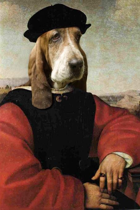 Ritratti da cani (e da gatti): animali domestici come opere d'arte - Corriere.it