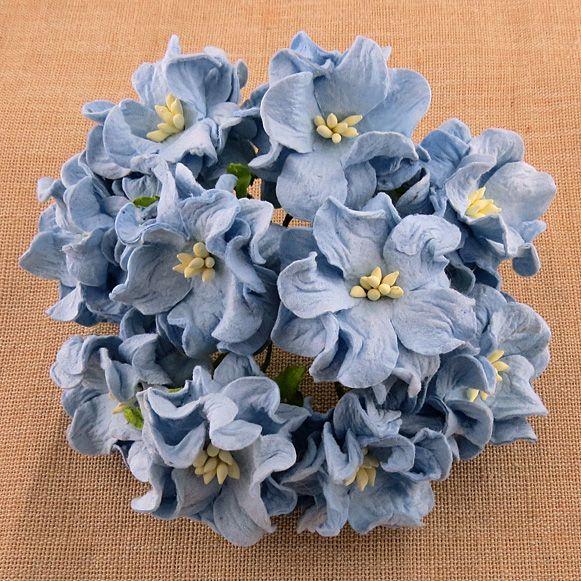 BABY BLUE GARDENIA FLOWERS