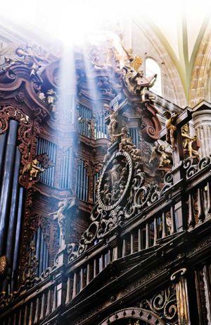 México es poseedor de dos joyas arquitectónicas y musicales únicas en el mundo: los órganos del coro de la Catedral Metropolitana. El Órgano Evangélico y el Órgano de la Epístola son conocidos comúnmente por ser solamente un instrumento, lo cierto es que son dos idénticos de estilo ibérico y son, también, los únicos que no sólo se han seguido tocando desde su creación, sino los únicos que se mantienen prácticamente como en el siglo XVIII..