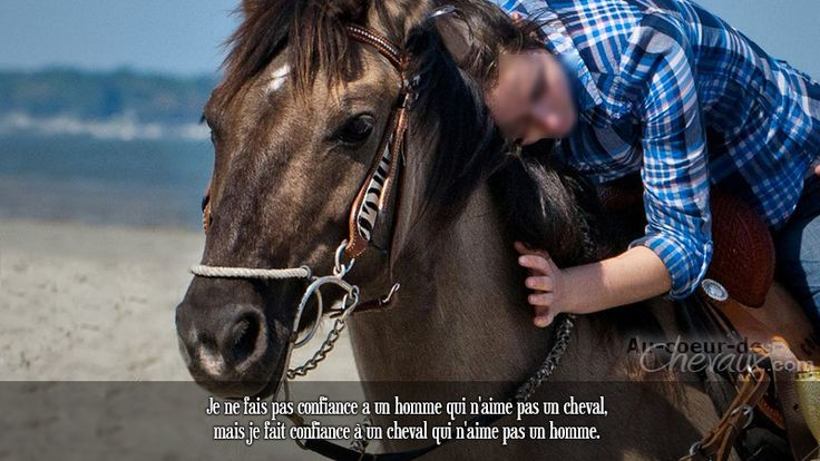 Je ne fais pas confiance a un homme qui n'aime pas un cheval, mais je fait confiance à un cheval qui n'aime pas un homme.