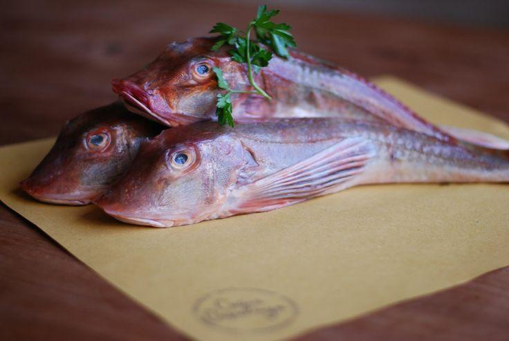 Pesce fresco (foto Rixt & Laura)