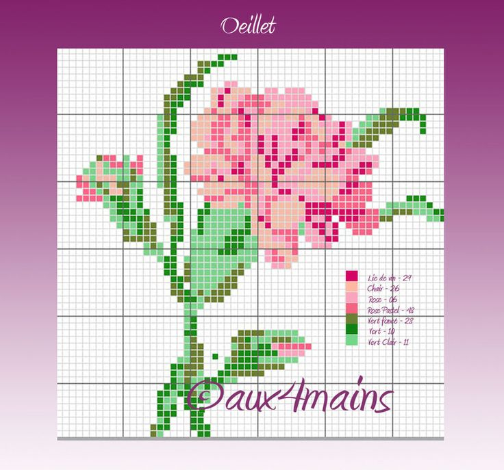 Dianthus hama perler pattern by aux4mains