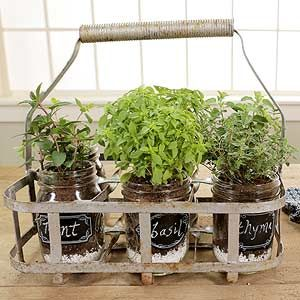 Portable Indoor Herb Garden - A convenient herb garden that could add a lovely and charming look to your kitchen!