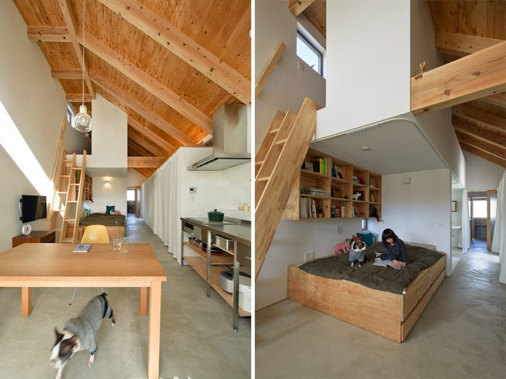 Dog grooming salon and house by horibe naoko architect for Architecture and design dog house