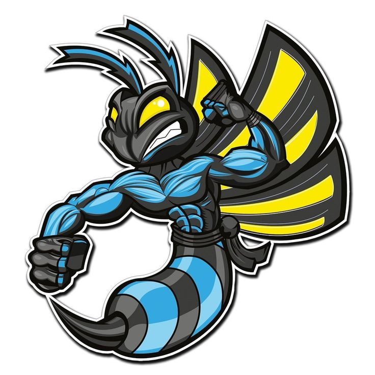 2 x Hornet Wasp Vinyl Sticker #4005