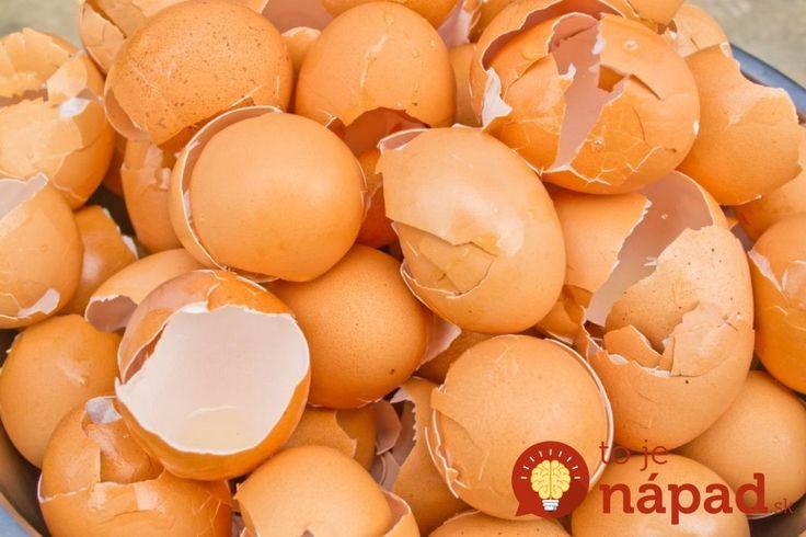 egg-shell