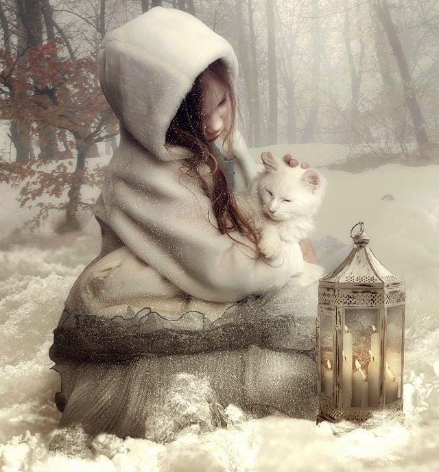 Le+fusa+dei+gatti+hanno+il++potere+di+guarire+molte+cose