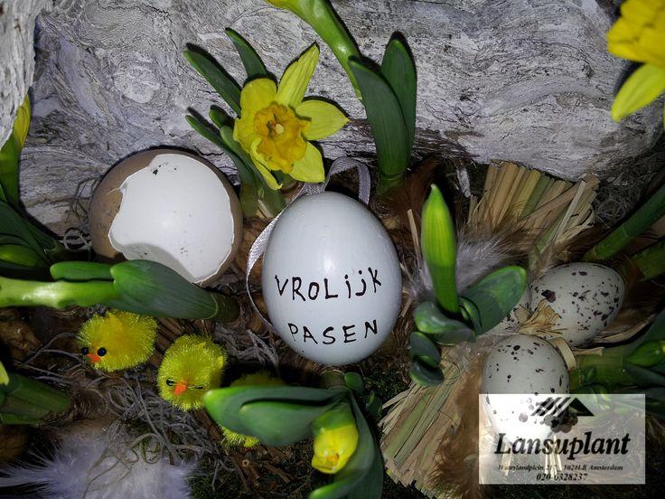 #Lente decoratie opgemaakt met narcissen en eierschalen van bloemenwinkel #Lansuplant waterlandplein #Amsterdam