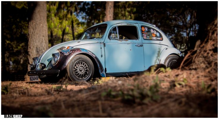 vw beetle shoot done by blacksheep