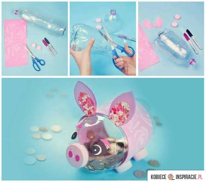 świnka 2