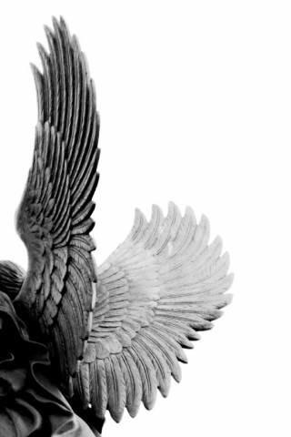#StoneAngels #sculpture #wings