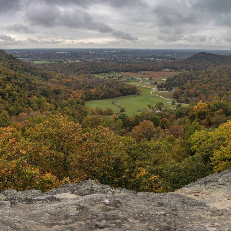 I hiked the Pinnacles overlooking Berea KY this past weekend [OC] [2000x2000] via Classy Bro
