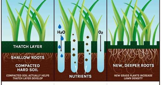 core-aeration-benefits-aerting-minneapolis