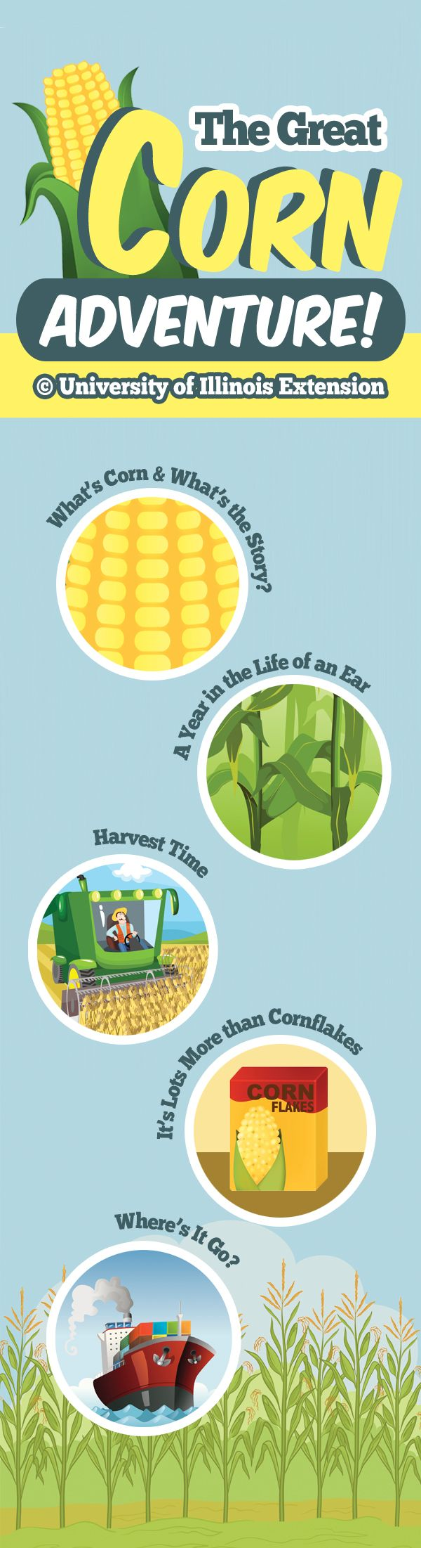 """Learn all about corn with """"The Great Corn Adventure!"""" A fun, interactive site for kids!"""