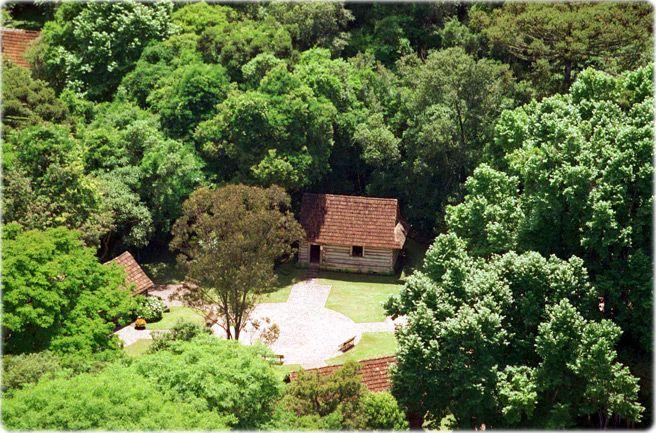 Bosque do Papa, Curitiba, PR - Brazil  I lived right behind it!  Saudades!