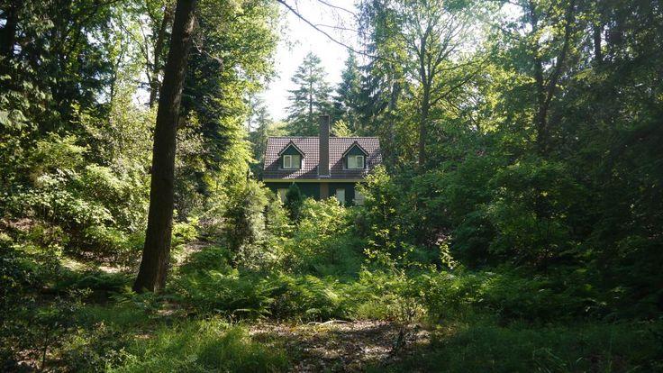 Natuurhuisje 31666 - vakantiehuis in Diever
