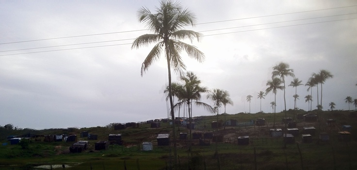 Sin Tierra (withouth earth) seatlements in Bahia - people that grab land.