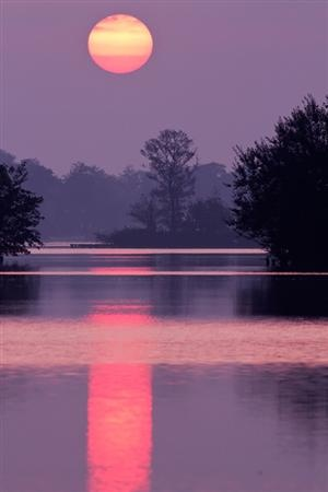 #photography: Photos, Picture, True Colors, Sky, Purple Sunsets, Beautiful, Natural, Moonlight, Sweet Dreams