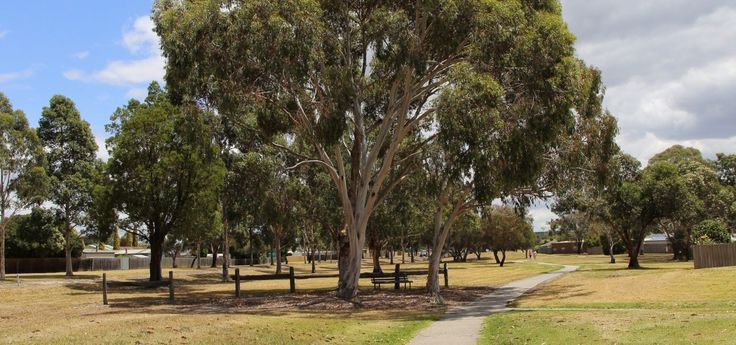 Walk under the gum trees in Traralgon. Join a local tour just $25