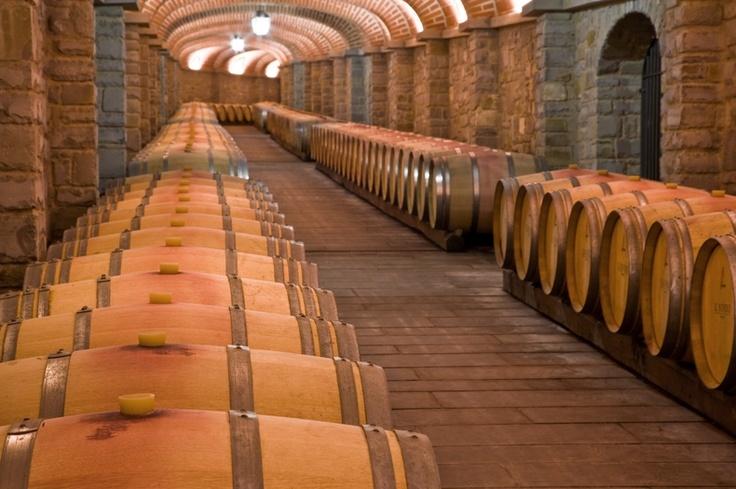 The wine cellars at Il Borro, in Tuscany Italy