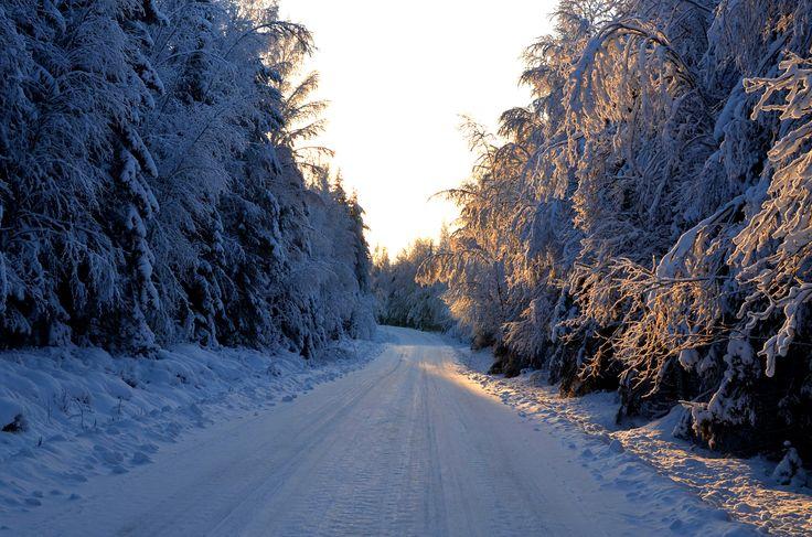 Winter road in Kainiemi
