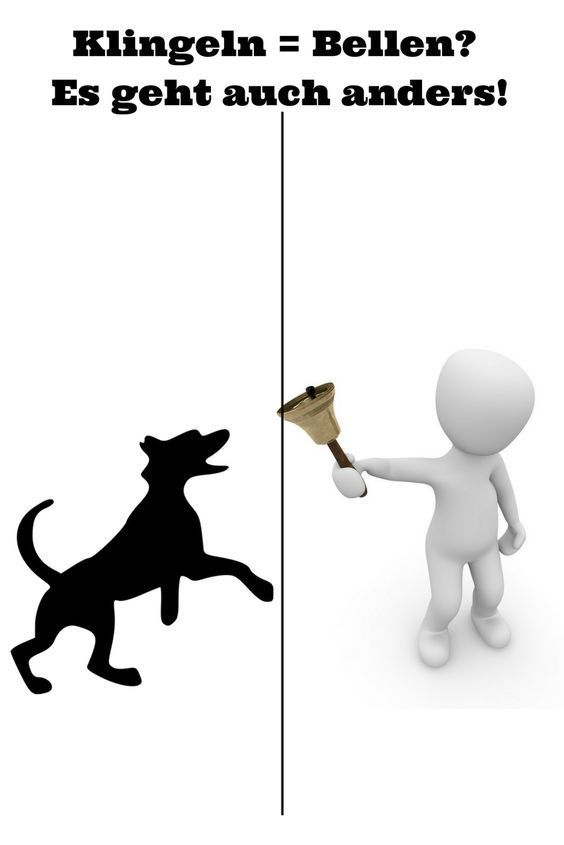 How to stop your dog from barking while ringing