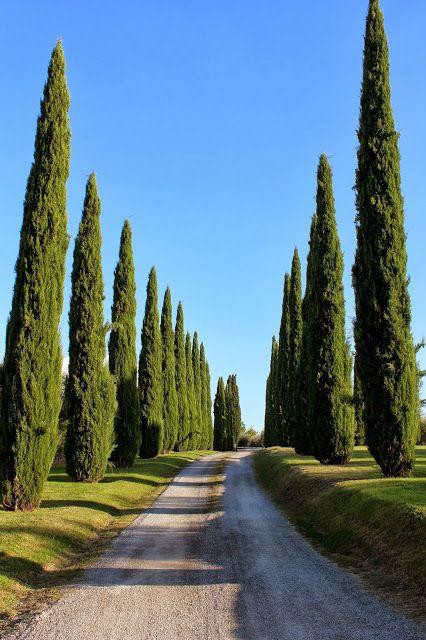 Dreams in HD: Travel :: Agriturismo La Sovana