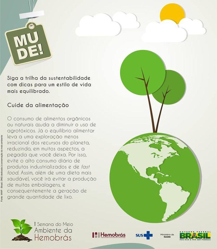 Siga a trilha da sustentabilidade com dicas para um estilo de vida mais equilibrado. Campanha da I Semana do Meio Ambiente na Hemobrás. Texto: Fernanda Felix/ Arte: Gabrielle Pazos