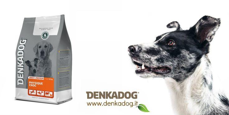 """Physique Croc per cani attivi, da sport e da """"lavoro"""" #dog #cane #denkadog"""