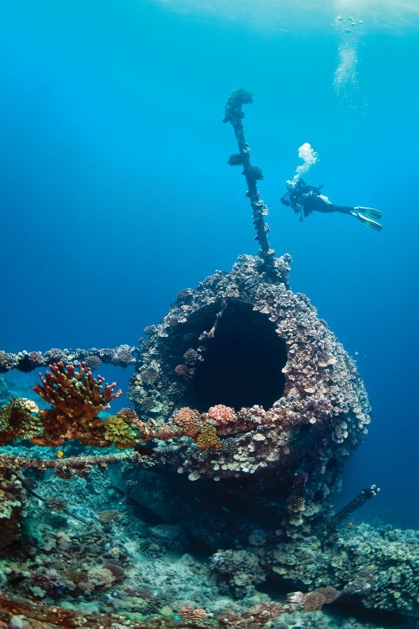 See better and take better photos. Carolina coast isn't very clear water, but these you could really see.--Scuba Diving Locations in Florida   Scuba Diving Top 100: Best Dive Sites for Visibility- Visibility important thing