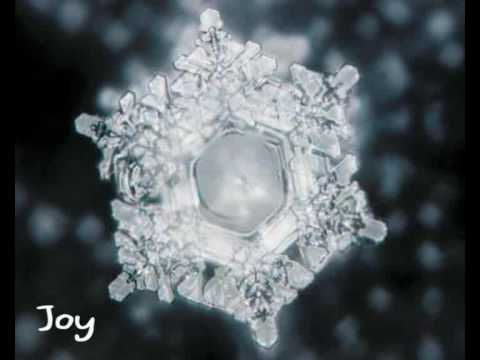 Water Crystals and Emotion. This is proof that negative speech, such as cursing, etc. is not healthy in our daily lives. Being positive about everything makes our lives much more joyful and easy! :)