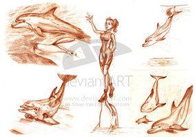 Sketches drawn in Marineland by Isabel D. Cabado http://silver-iruka.deviantart.com