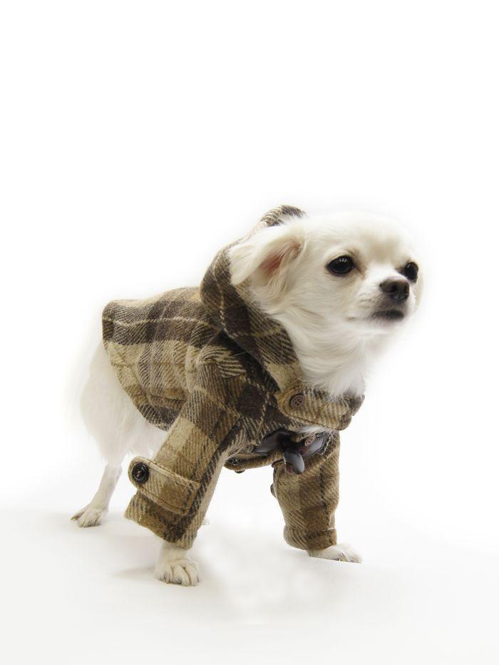 ダッフルコートが似合うメロンです。寒い季節におすすめです。犬服工房で型紙を販売中。