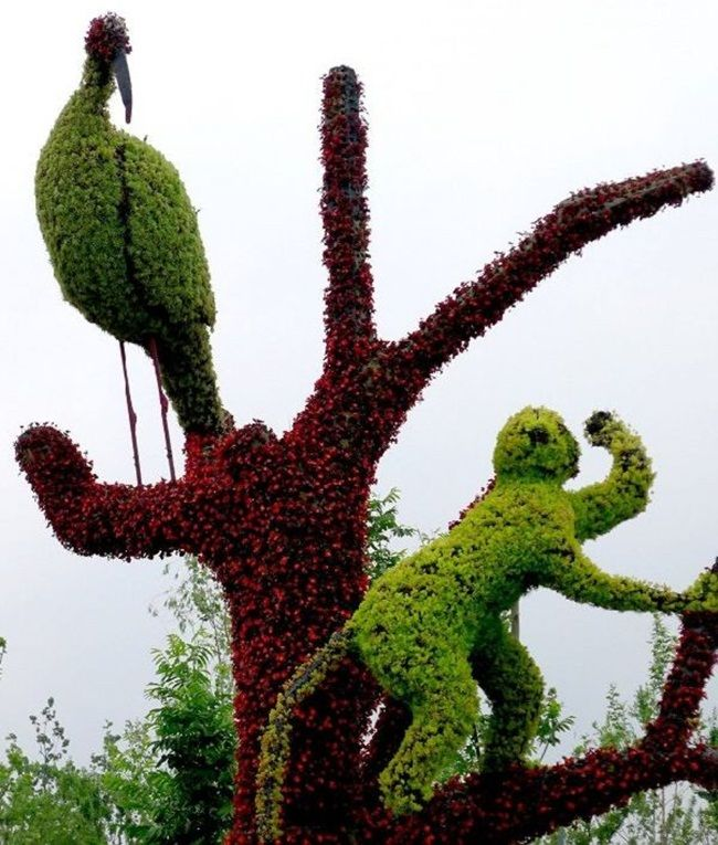 Amazing Topiary: ツ Topiary ツ