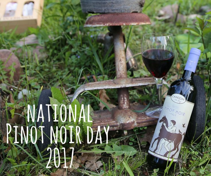 Celebrate National Pinot Noir Day with Candoni Wines! http://bit.ly/2ueaNyt