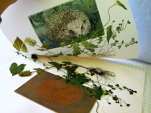 Hedgehog being printed. Lynn Bailey