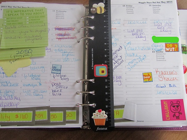 I may like to try a Filofax.....