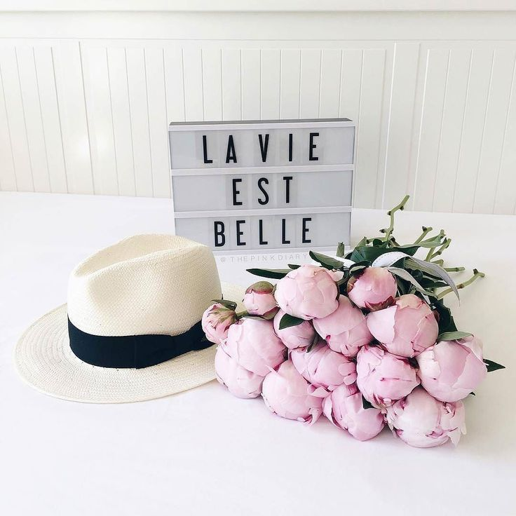 Did you know that 30% of the English language is French? French is spoken by 220 million people on all continents.. French is beautiful and so is life! : @thepinkdiary