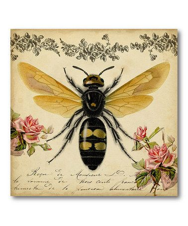 Another great find on #zulily! Honey Bee Canvas Print #zulilyfinds with pretty roses