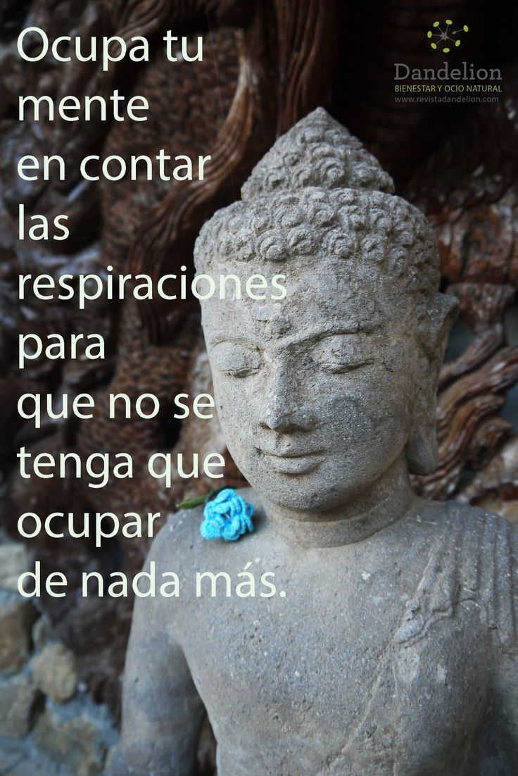 Meditación Ocupa tu mente en contar las respiraciones, para que no se tenga que ocupar de nada más.