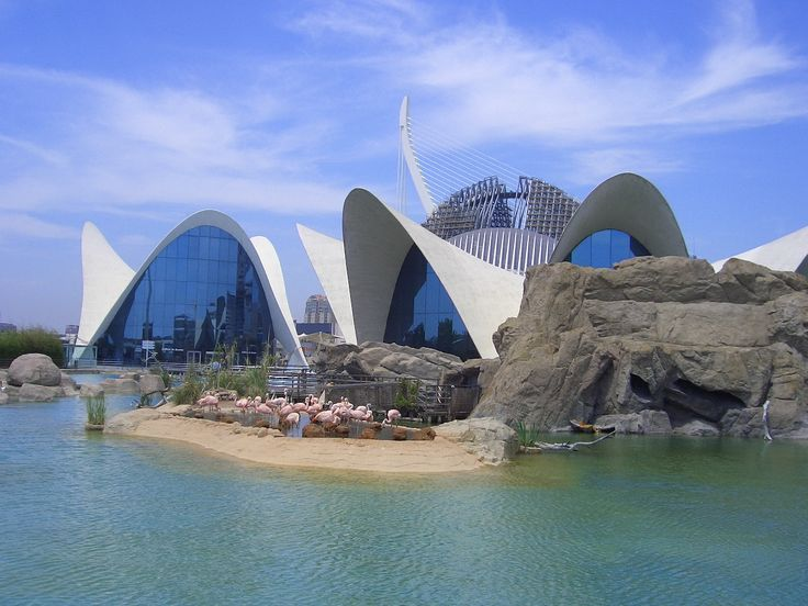 Valencia tourism 292 things to do in valencia spain for Promociones oceanografic
